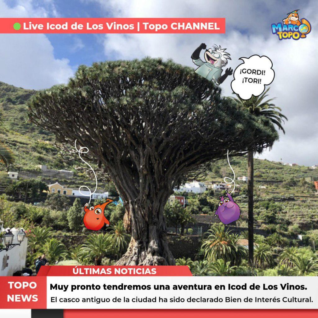 Marco Topo en Icod de Los Vino